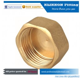 Hot selling Acorn nut hex brass m16 flange cap nut