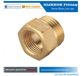 Brass Female Threaded Pipe Fitting Connector